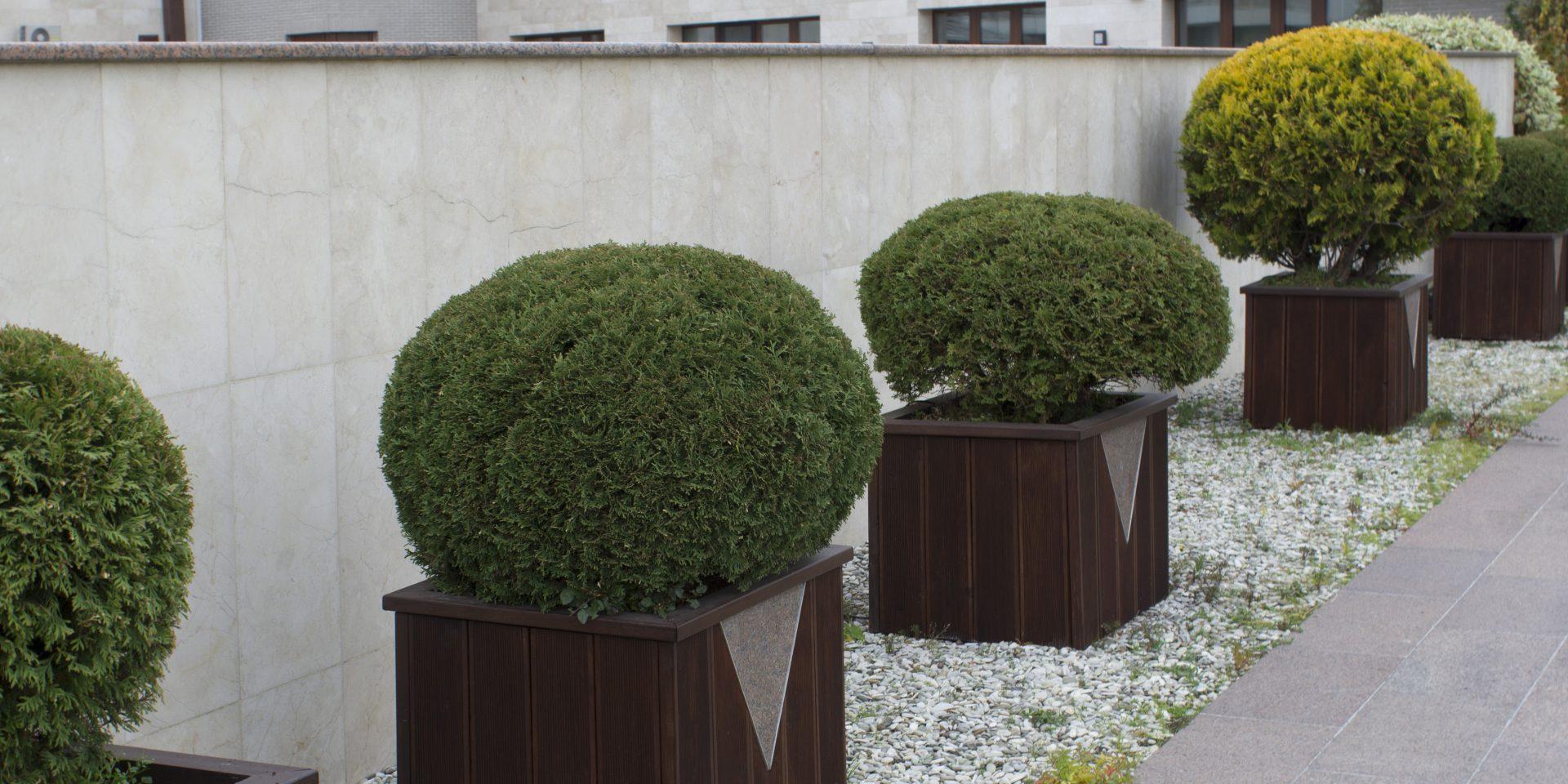 roof_garden_one30