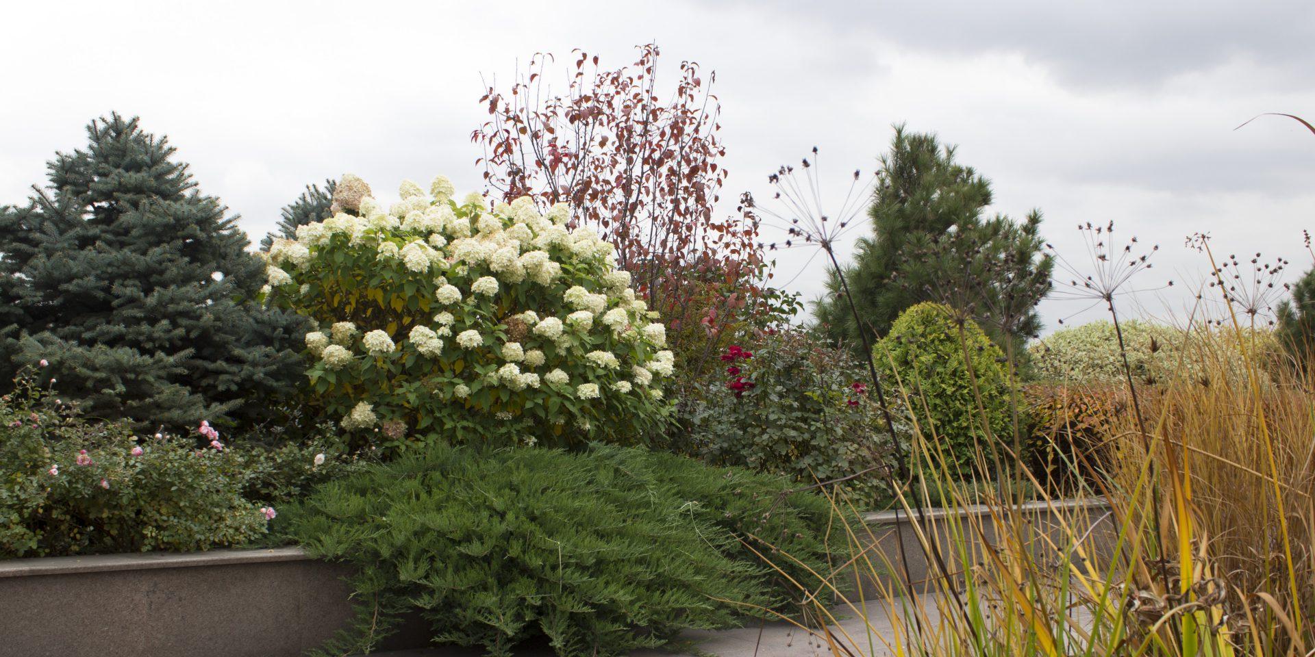 roof_garden_one70